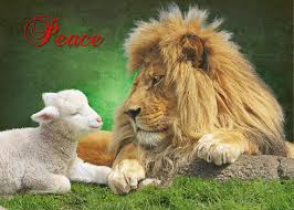 The Lamb & the Lion
